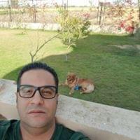 Mostafa Negm