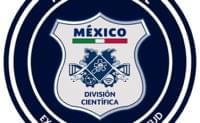 Policía Federal (CERT MX y estadísticas en ciberdelitos) image